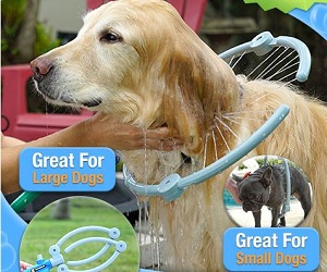 Pooch Woof Washer is a Dog & a Mans Best Friend!